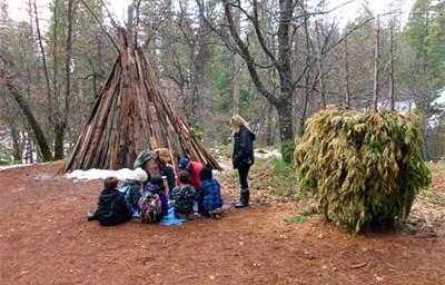 teepee made of wood sticks